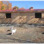 10'x32' 2- 10'x12' Stalls w/ optional 8' tack room & 2 cupolas (goats not included)