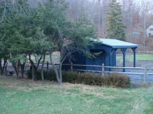 10x20 Stall Barn w Tack and Overhang