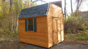 8x10 Cedar High Wall Shed